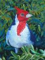 """""""My feathered friend"""" 9x12´, 30x40cm gerahmt, Uart 400, Sennelier, (C)D.Saul 2016"""