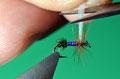 tagliare l'ala a misura, ovvero appena oltre la lunghezza delle fibre dell'hackle