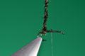 avvolgere le herl di pavone fra gambo ed inizio  della curvatura