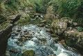 Rio Garrafo