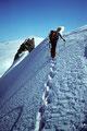 Rückmarsch zum Grand Gendarm ( Kluckerturm ) 3870 m