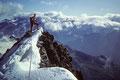Endpunkt des Gipfelgrates Obergabelhorn 4063 m