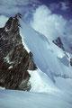 Ostnordostgrat und Nordwand des Obergabelhorns 4063 m