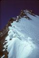 Rückblick zum Obergabelhorn 4063 m - Ostnordostgrat -