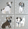 Chiens chics 4x30x30 or