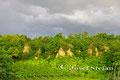 Wagram: Die neun Mauna bei Gr.Riedenthal