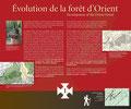 Évolution de la forêt d'Orient