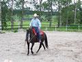 Wichtig - das Pferd nach innen orientieren!