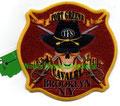 "FDNY E207 B31 D11 L110 ""Fort Greene Cavalry"""