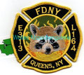 FDNY Engine 313/Ladder 164