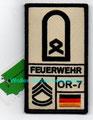 BW-Fw, Hauptfeldwebel