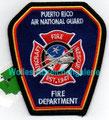 Puerto Rico Air National Guard ARFF
