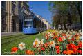 Promenadeplatz München by Tour-X.de