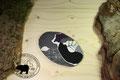 Natursteinkissen: Kirschsteinkissen kleiner Saphir