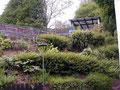ursprünglicher Zustand - abfallender Hang mit Bux und viel Gebüsch.