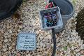 Kabelzusammenführung im Garten mit diversen Klemm Methoden in geschützten Dosen, die wiederum in Rohren verschwinden.