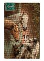 Barzoï  8 (repro carte postale ancienne, Coll. Manializa)