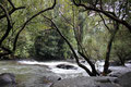 trügerisch ruhiger Fluss