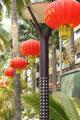in Jinghong