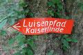 ... in Wiederstein (Foto: E. Klein)