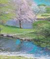 「御苑の桜」