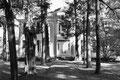 """Rowen Oak :""""Sa blanche simplicité rêvait, inchangée, parmi les vieux arbres criblés de soleil..."""" Extrait de """"Sartoris"""" de W. Faulkner."""