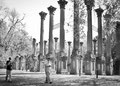 """Ruines de Windsor : """"Vieilles briques et allées d'herbes enchevêtrées, le tout dominé par la ruine à colonnade..."""" Extrait de """" Le Hameau"""" de W. Faulkner"""
