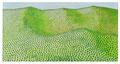 Grüne Landschaft     40 x 80 cm  Acryl auf Leinwand 2017