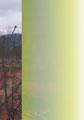 Une certaine étendue    2012     21X30 cm  collage numérique