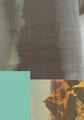 L'étoffe des Rocheuses   2012  21X30 cm  collage numérique