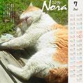 ノラネコ カレンダー 2014-6月