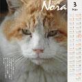 ノラネコ カレンダー 2014-3月