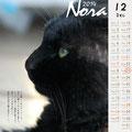 ノラネコ カレンダー 2014-11月