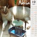 ノラネコ カレンダー 2014-9月