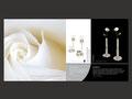 Produktbroschüre Seite 5 und 6, Schmuckfarbe silber