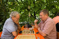 Schach in den Kastanien