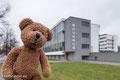 """Dessau ist rund um das Weltkulturerbe """"Bauhaus"""" herum gebaut."""