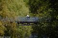 Fahrradbrücke über die Derisam