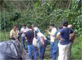 Besuch auf der Finca David Chavez / COMSA, Mai 2010