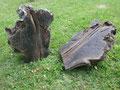 Bogwood (chêne) Irlande - 56/45 cm x 2 (32 kg)