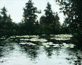 1994 Waterlelies acrylverf op paneel 48 x 60 cm. € 700,-