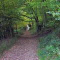 Der Kreuzweg zum Kloster MARIA WALD