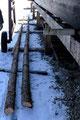 Abattage pins pour mât du Navion et l'Insubmersible © A.Réchard