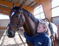 2004: Grundausbildung zum Voltigierpferd
