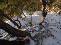 kurz unter der 1. Kanzelzinne, schattseitig liegt schon etwas Schnee