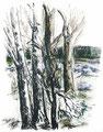 Elke Wolf   Garten der Kindheit    Algrafie - aquarelliert