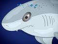 Illustrationen für das Kinderbuch Anna und der Pfützenhai - Der Hai im Fernsehen