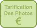 Tarification des photographies