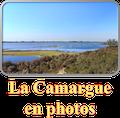 La Camargue en photos