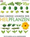 Das große Lexikon der Heilpflanzen 550 Pflanzen und ihre Anwendungen